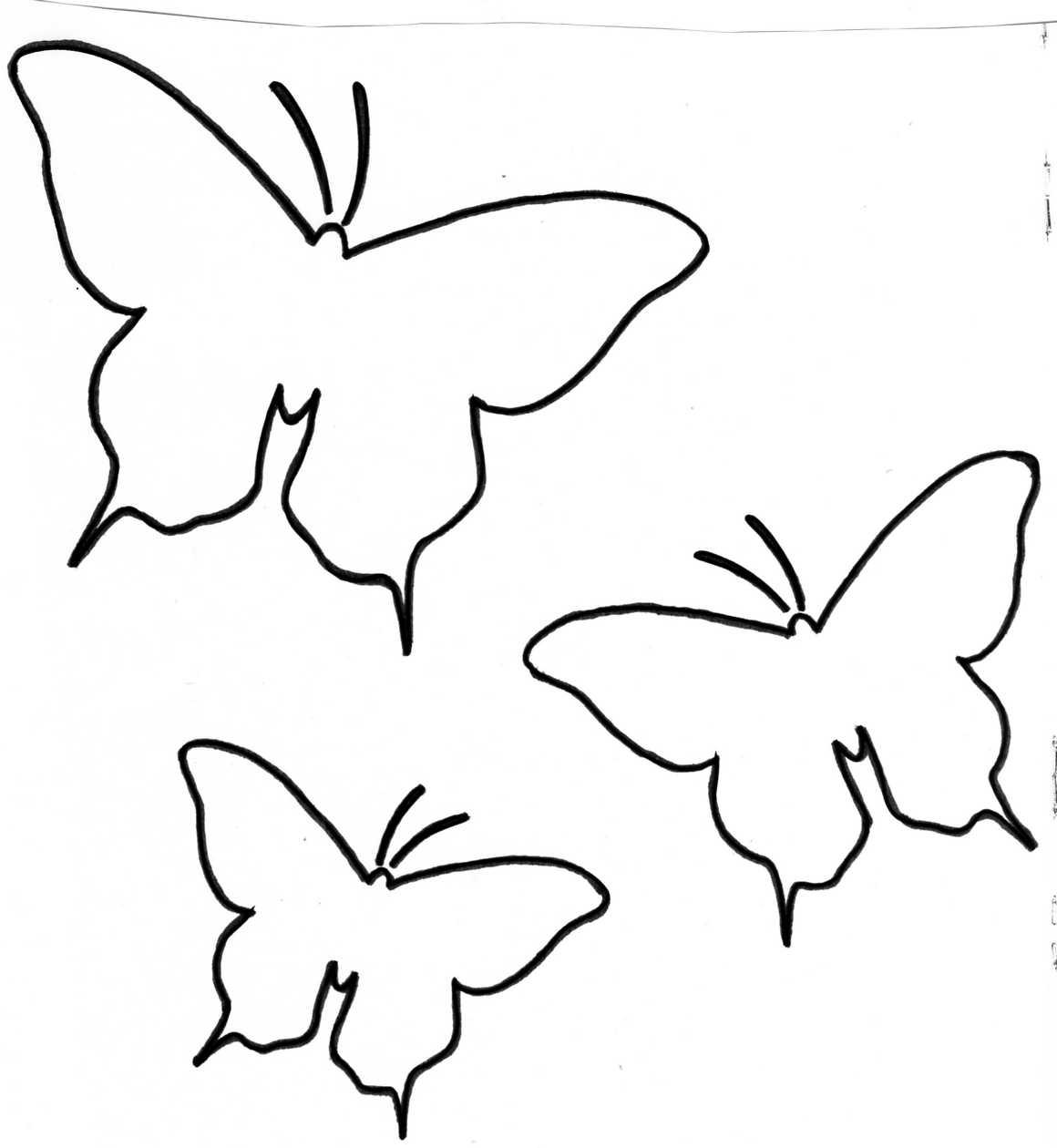 Petits papillons en papier bouts d 39 choux et boutons d 39 roses - Dessin petit papillon ...